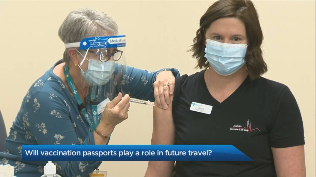 Click to play video 'The Travel Lady: Will vaccination passports play a role in future travel?'