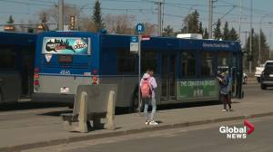 ETS happy with new bus network launch — Edmontonians have mixed experiences (01:45)