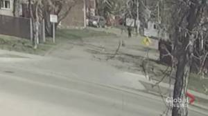 Edmonton police video of northeast random assault suspect