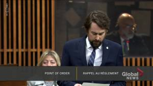 Bloc Québécois MP apologizes for taking photo of Liberal MP caught naked during parliamentary video call (00:34)