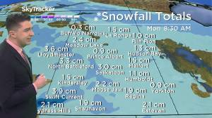 Snow possible to end the weekend: Jan. 15 Saskatchewan weather outlook (02:37)