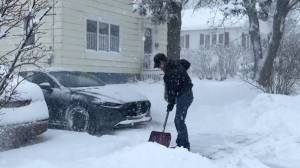Winter storm causes closures in New Brunswick (02:10)