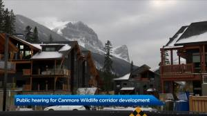 Wildlife corridor development in Canmore advances to public hearing (01:26)