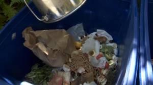 City of Saskatoon looking to find best ways to divert food waste