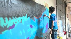 COVID-19: Edmonton artist crafts mural made out of health-care workers words (01:16)