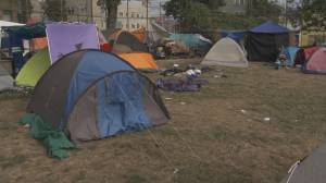 Year to date police calls to Oppenheimer Park up more than 50%