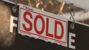 Calgary re-sale housing market compared to a 'scene out of Mad Max' amid COVID-19 (02:42)