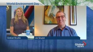 Montreal plays digital host to World Environment Day (04:13)