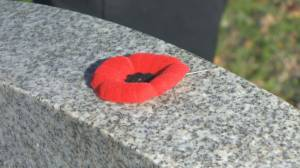 N.S legions poppy campaign still on amidst pandemic