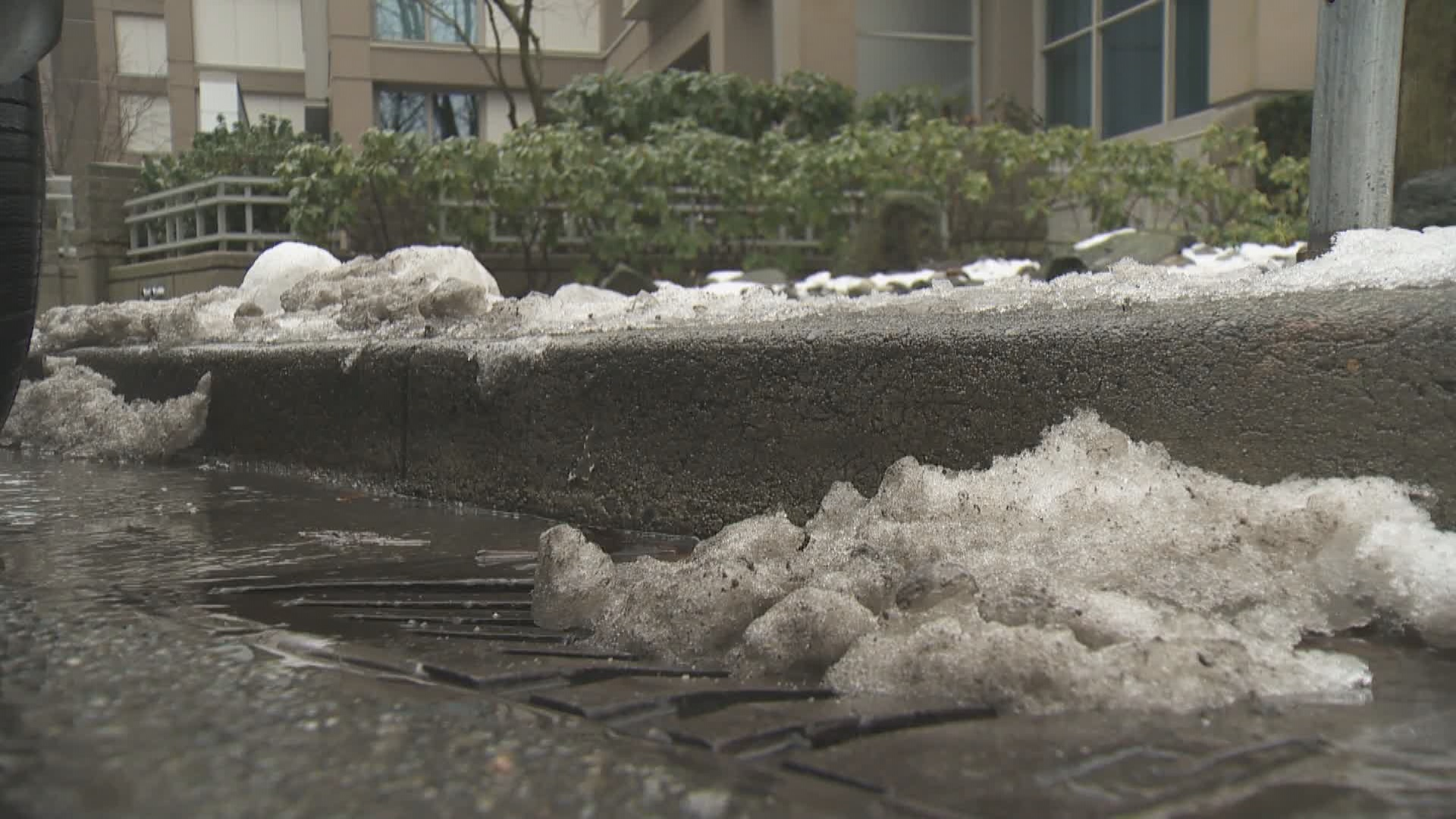 Snow begins to disappear across B.C. South Coast