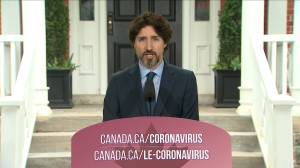Coronavirus outbreak: Feds continue to add to COVID-19 supply stores to  meet future demand