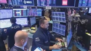 COVID-19 fears trigger market meltdown
