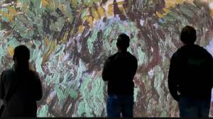 'Imagine Van Gogh' exhibit comes to Vancouver (03:24)