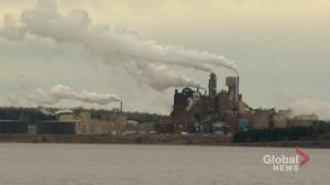 Northern Pulp debate divides Pictou