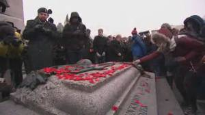 Thousands honour veterans at Remembrance Day ceremony in Ottawa