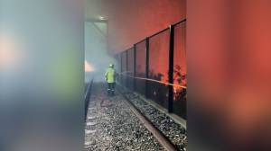 Firefighters spray water along railway lines as fires damage Sydney rail infrastructure