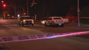 Two suspects arrested in South Surrey shooting