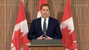 "Coronavirus outbreak: Scheer asks Trudeau ""Where's the plan?"" to increase COVID-19 testing capacity"