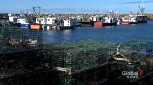 Indigenous fishers optimistic following granted interim injunction (01:43)