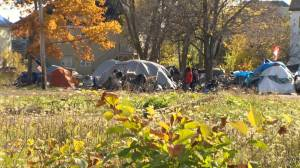 Moncton working with provincial government to deal with new tent city