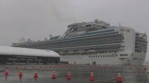 COVID-19: Ottawa to bring home Canadians on Diamond Princess cruise ship