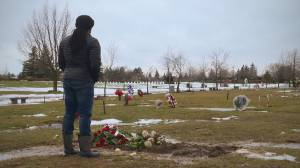 Ontario reports 0 new COVID-19 deaths in 24-hour period for 1st time since October 2020 (02:18)