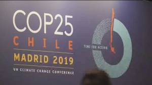 Countries talk carbon emissions at COP25 climate summit