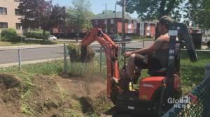 West Island community groups join forces to plant local community garden