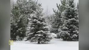 Viewer video shows parts of Ontario blanketed in snow