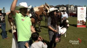 Volunteers bring 'awesome' pop-up Calgary Stampede events to new Canadians