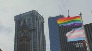 Pride flag won't fly at Halton Catholic schools (01:44)