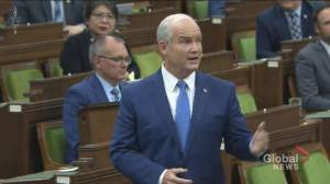 O'Toole calls on Liberals to joins Conservatives in censuring Sajjan as Freeland defends minister (01:02)