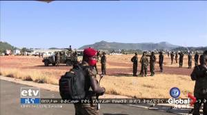 Tigray conflict: Ethiopian forces claim to have killed or captured most rebel leaders (01:15)
