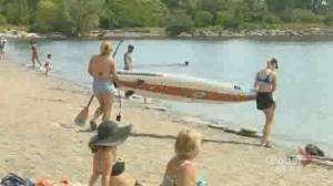TPS monitoring crowd concerns at Humber Bay Shores