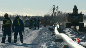 Scott Moe 'disappointed' with Joe Biden's plan to cancel Keystone XL pipeline (01:42)