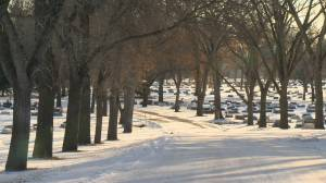 Shift from casket interment to cremation changing Regina cemeteries