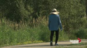 Let it grow: Edmonton increases naturalization on city properties (01:36)
