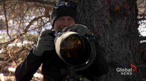 Sad ending to incredible experience for professional wildlife photographer (02:24)