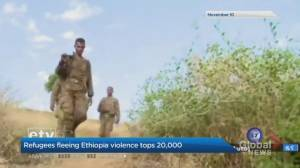 Refugees fleeing Ethiopia violence tops 20,000 (01:26)