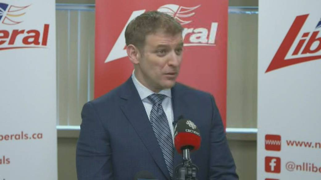 Click to play video 'Critics question timing of N.L. election call'