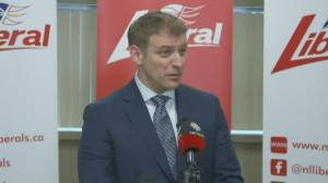 Critics question timing of N.L. election call (02:31)
