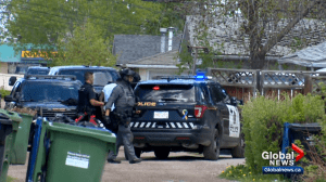 Police investigating shooting in northeast Calgary (02:15)