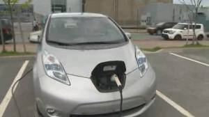 Study reveals why Canadians reluctant to buy electric vehicles (02:28)