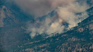 B.C. Wildfire Service official says progress being made, have not had significant growth in fire activity (04:59)