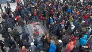 Remembrance Day: People lay poppies at Tomb of the Unknown Soldier