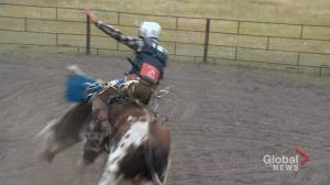 Saskatchewan family riding out pandemic while bull riding in backyard