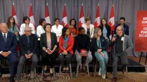 Health care professionals urge further action on gun control in Canada