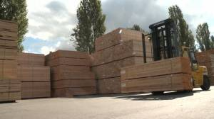 Lumber industry seeing drastic price increase and shortages (01:42)