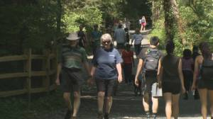Day-use passes introduced for six provincial parks (02:02)