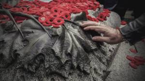 Reduced Remembrance Day ceremonies (03:40)
